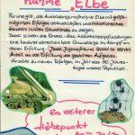 """Kampfblatt Manöver """"Elbe"""""""